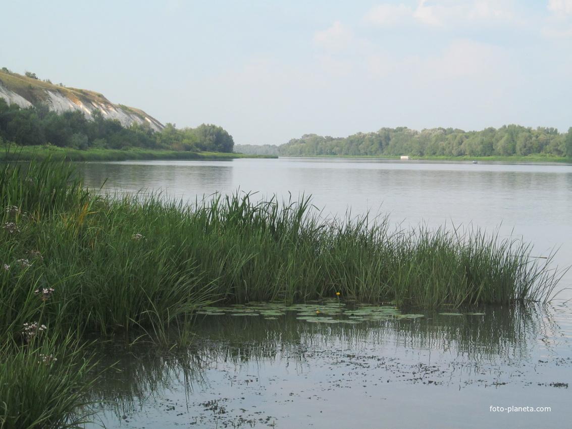 рыбалка на дону россошанский район