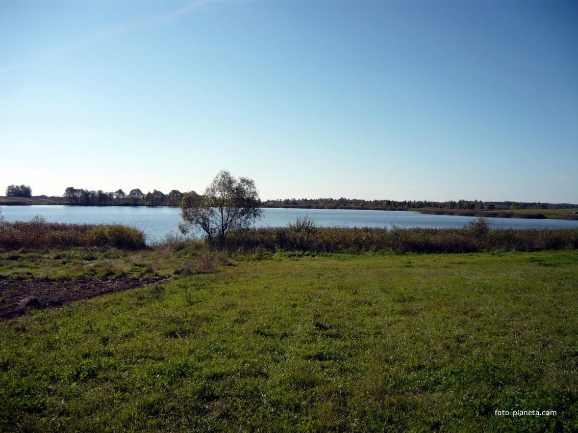 озеро | Новый Погост (Миорский район)