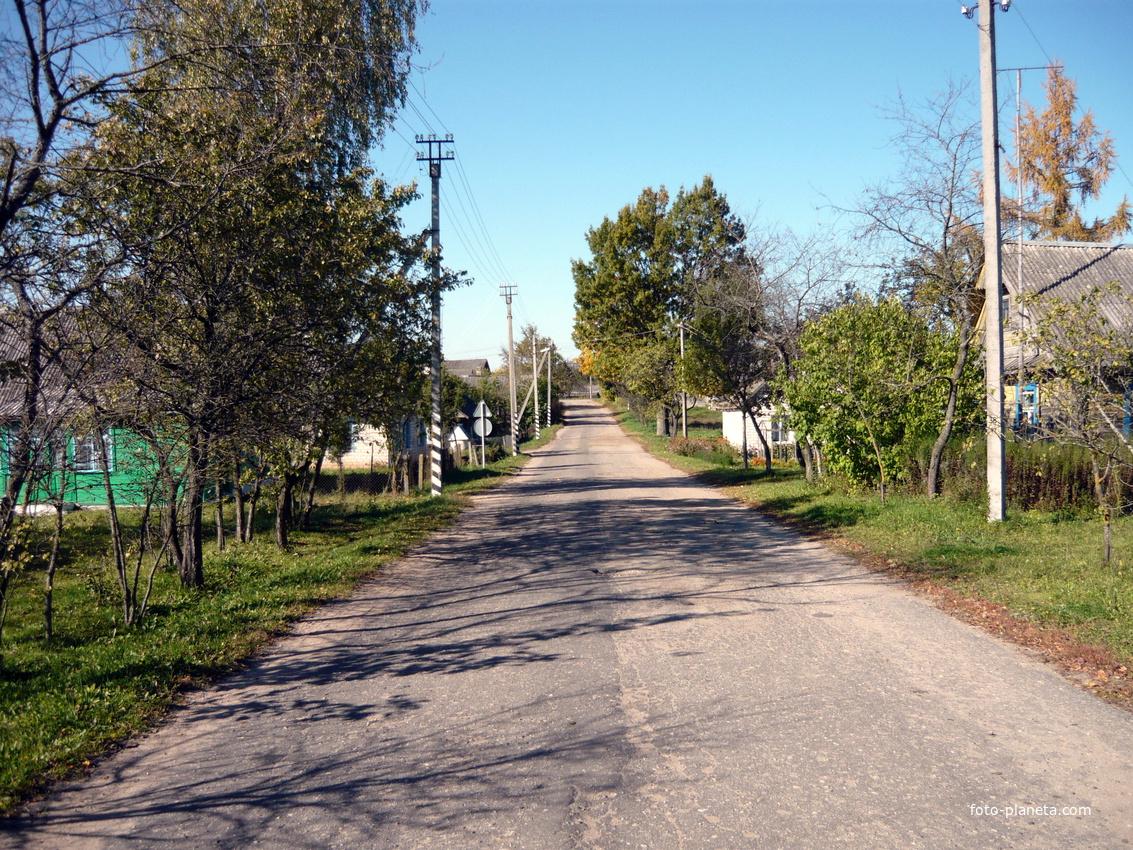 улица выходящая на Старо-Погостский тракт | Новый Погост