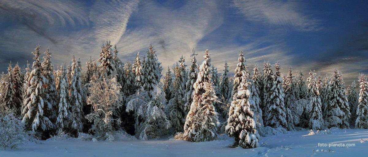 Фотография декабрь - фотограф евгений кошелев