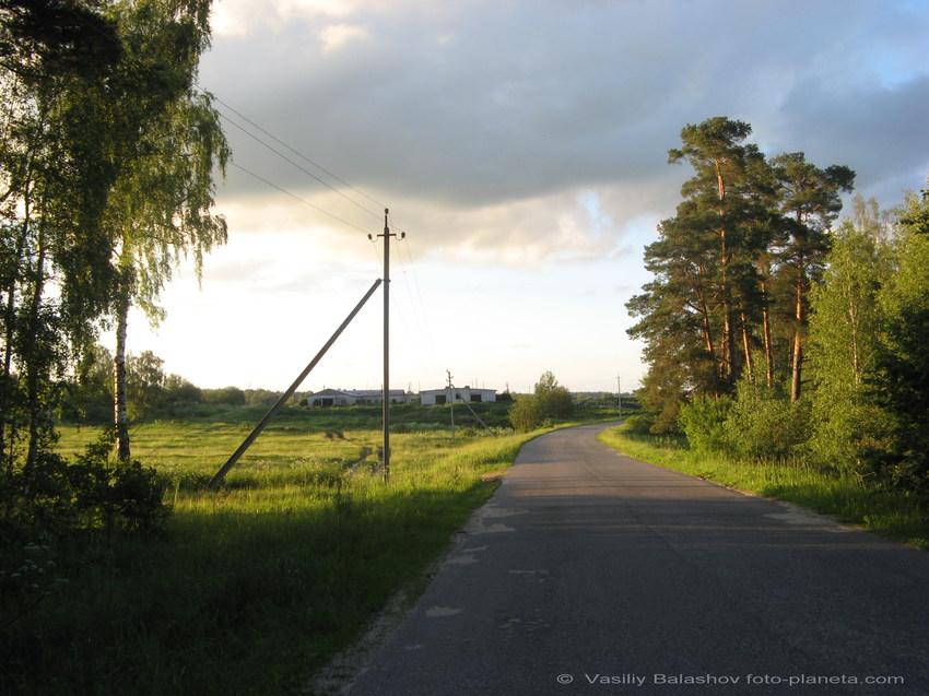 д. Подвязново, ферма