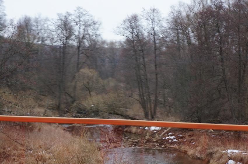Тростники, речка Каширка