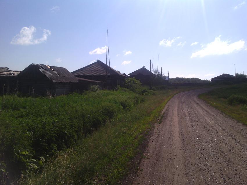 Дорога в д.Усть-Сосновка,со стороны лугов.
