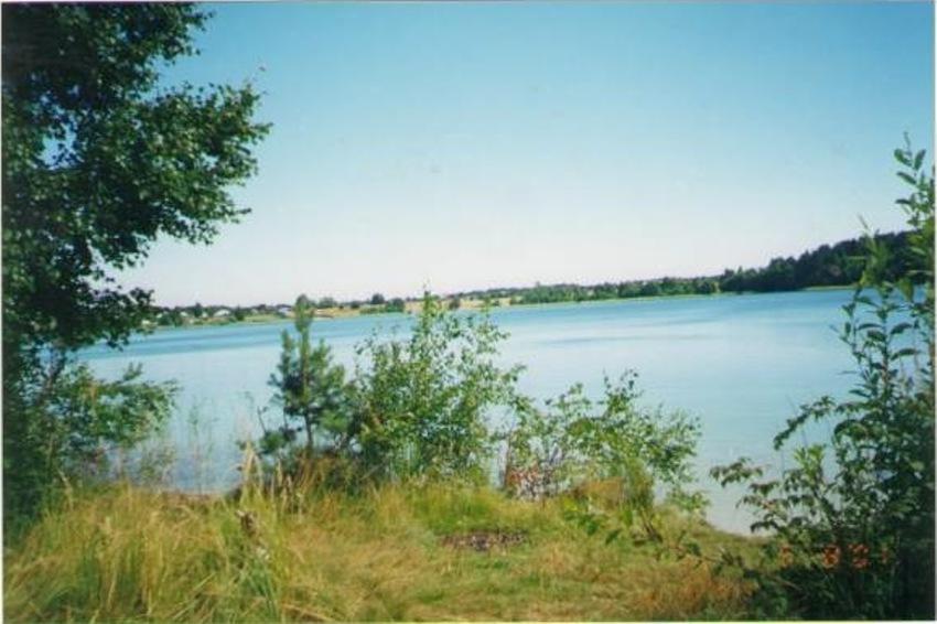 клепиковский район озеро великое рыбалка