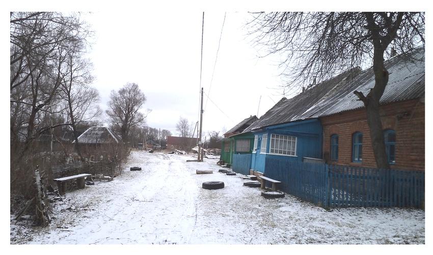мишнево. улица