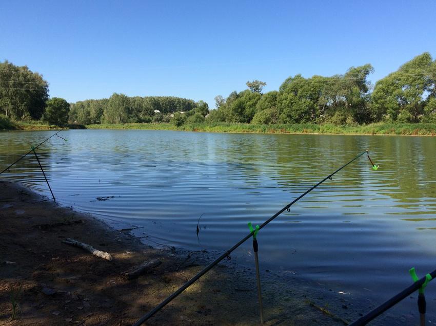 рыбалка в щапово подольский район