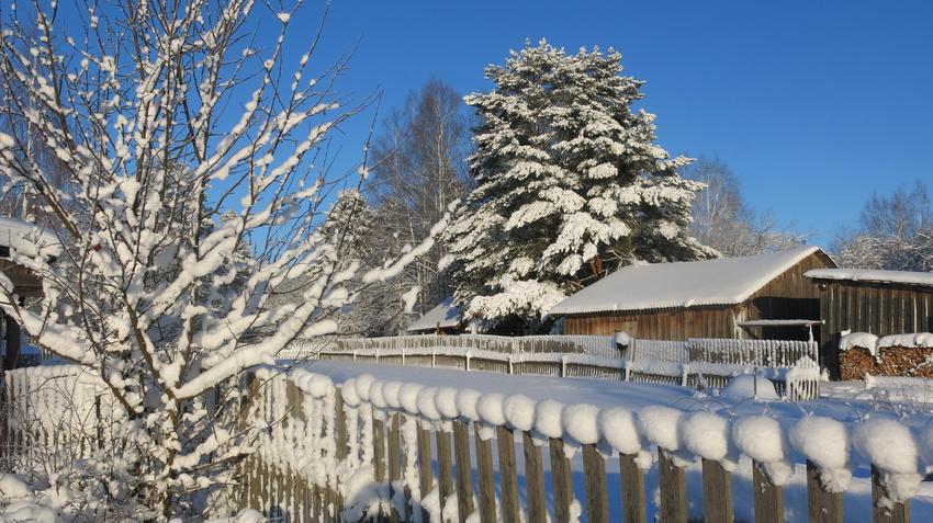 Зимушка-зима. | Щипцово (Пошехонский район)