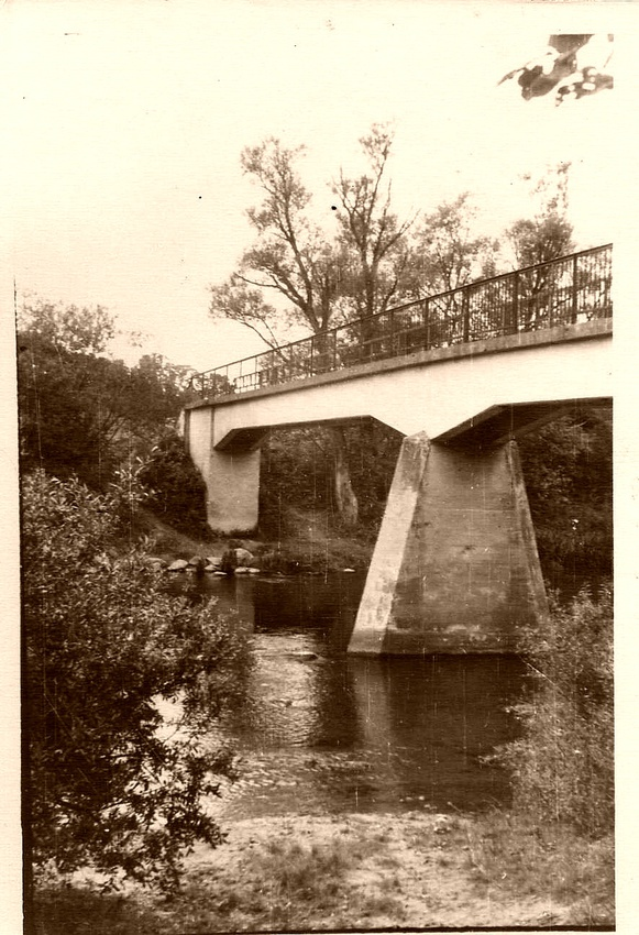 мост на дачу