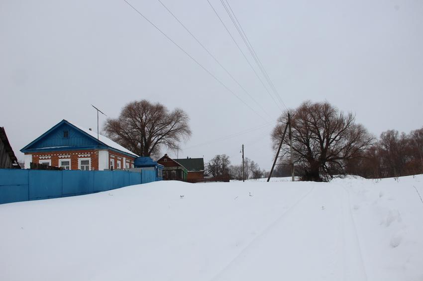 д. Филипповичи, Зарайский район. Февраль, 2016