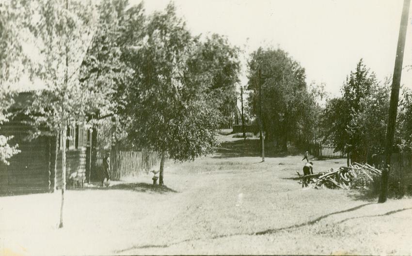 1967 год. Кожино. Из архива. Простая улица Кожино. Гуляют курицы,готовят дрова.
