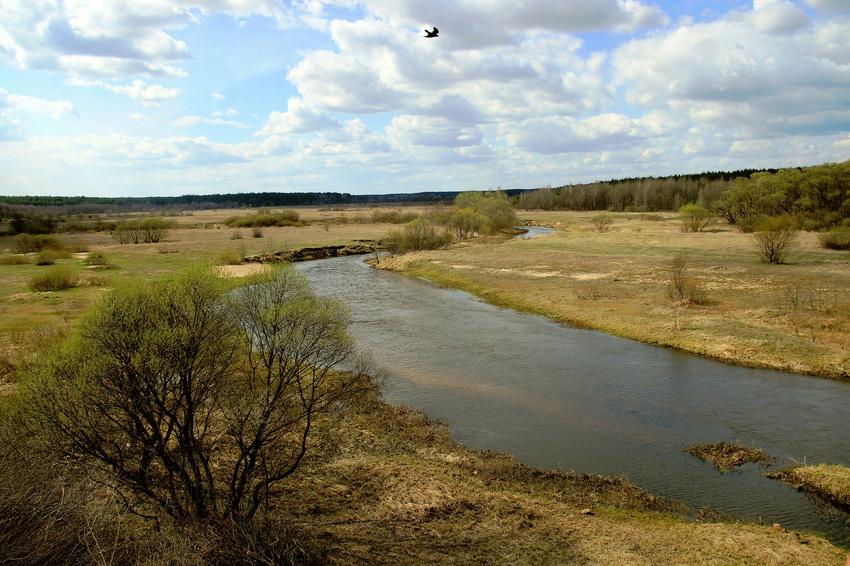 Река Бесядь.