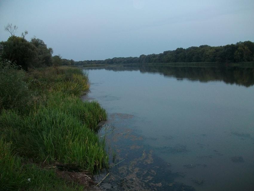 рыбалка на озере петровское в коломенском районе