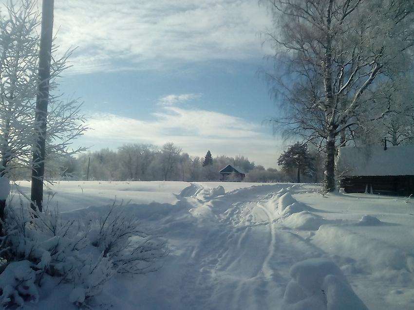 Щипцово-Зимний денёк! | Пошехонский район