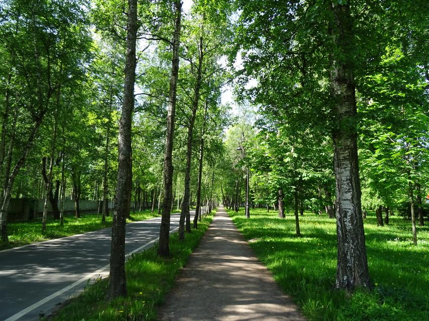 парк тихий отдых в санкт петербурге фото там было, понимаем