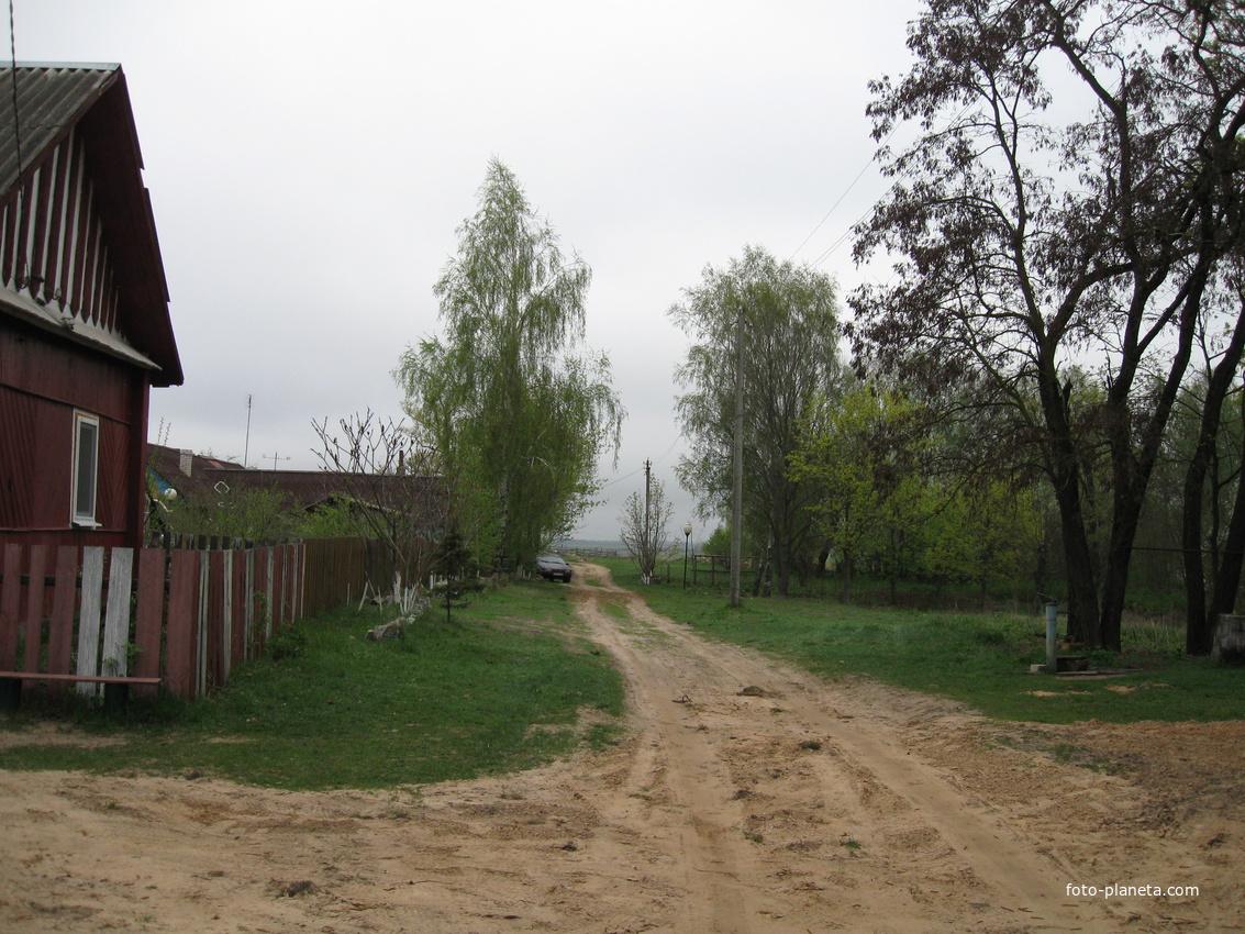 Новый Быхов ул.Озерная