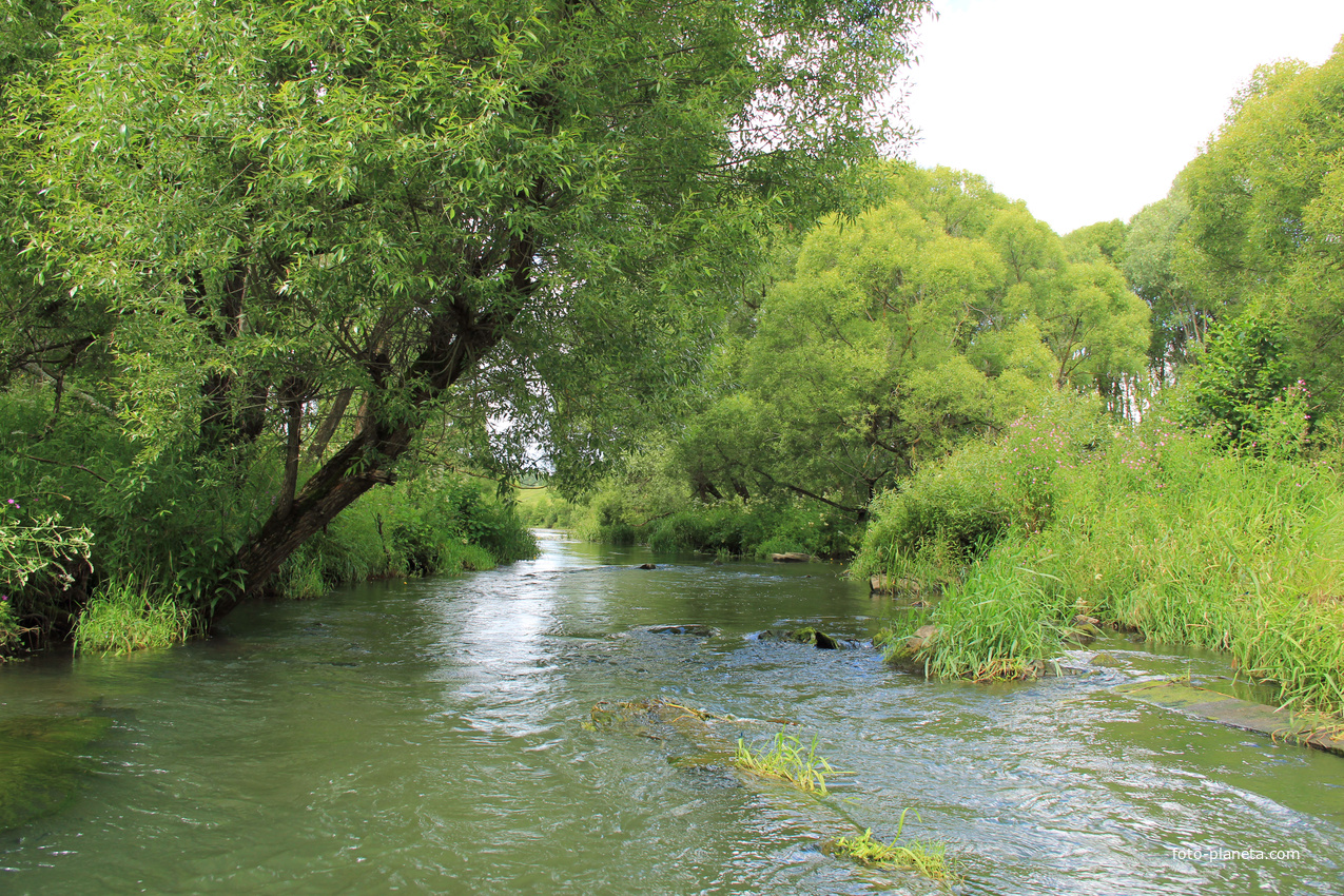 силу того, фото реки сирена это далеко весь
