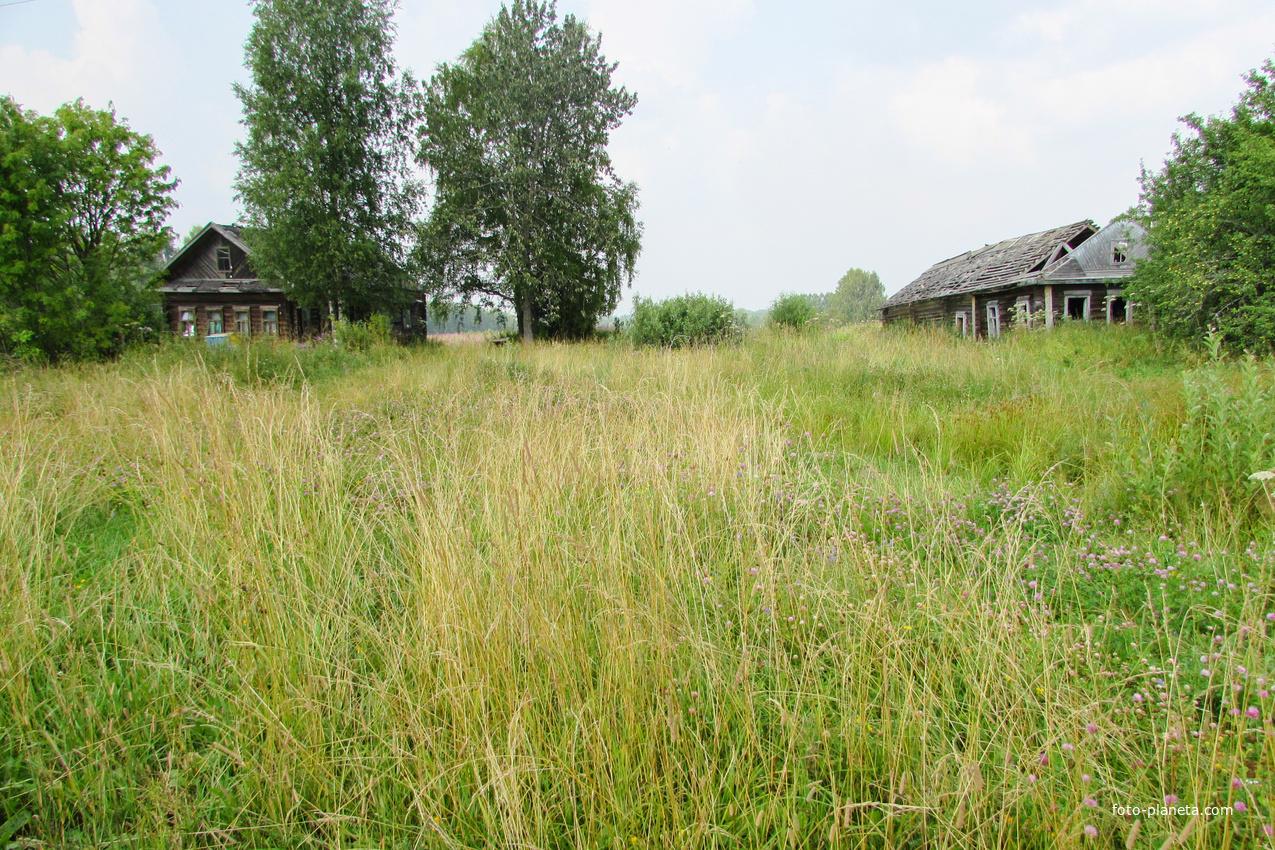 Соседи | Щипцово (Пошехонский район)