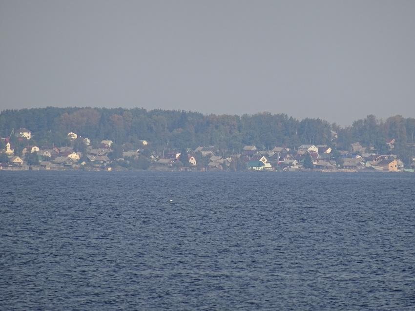 картинки петрозаводск соломенное меланхоличный