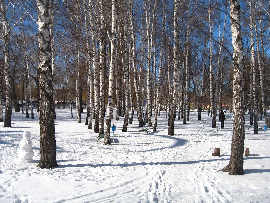 Россошь. Зимний парк