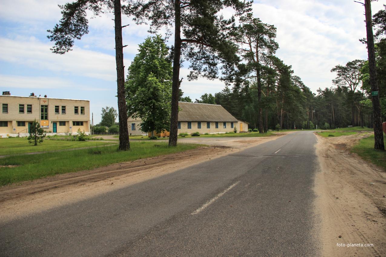 Дорога на Крапивню.