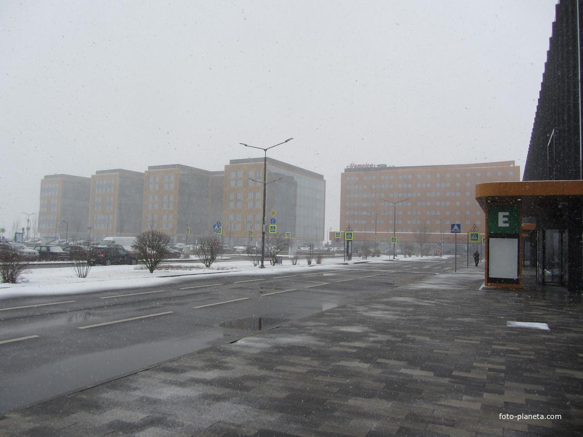 Экспофорум на Пулковской горе