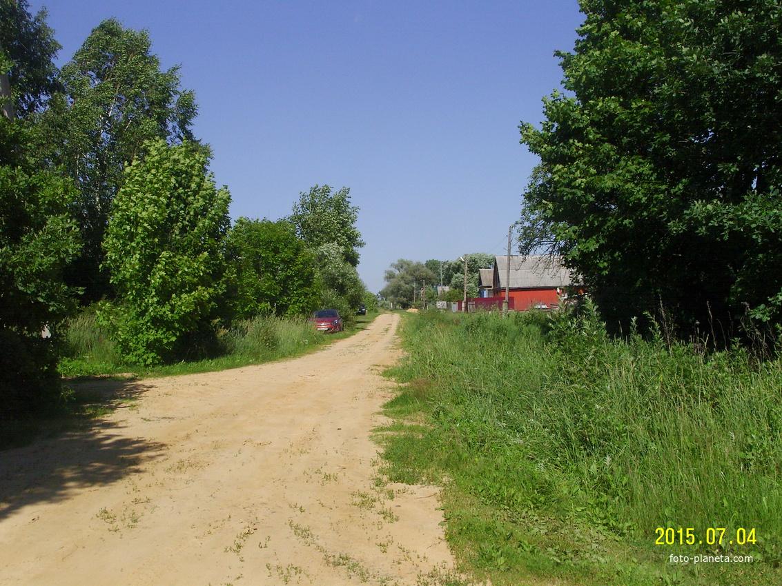 Центральная улица в деревне Тупицыно