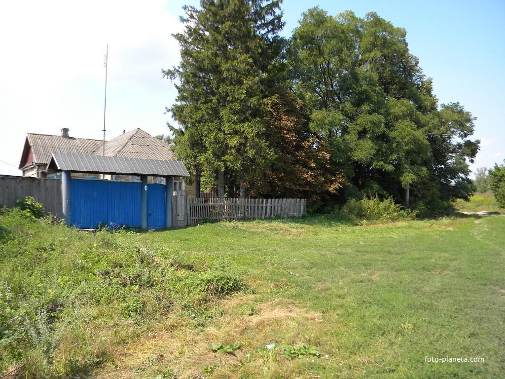 Дом директора школы