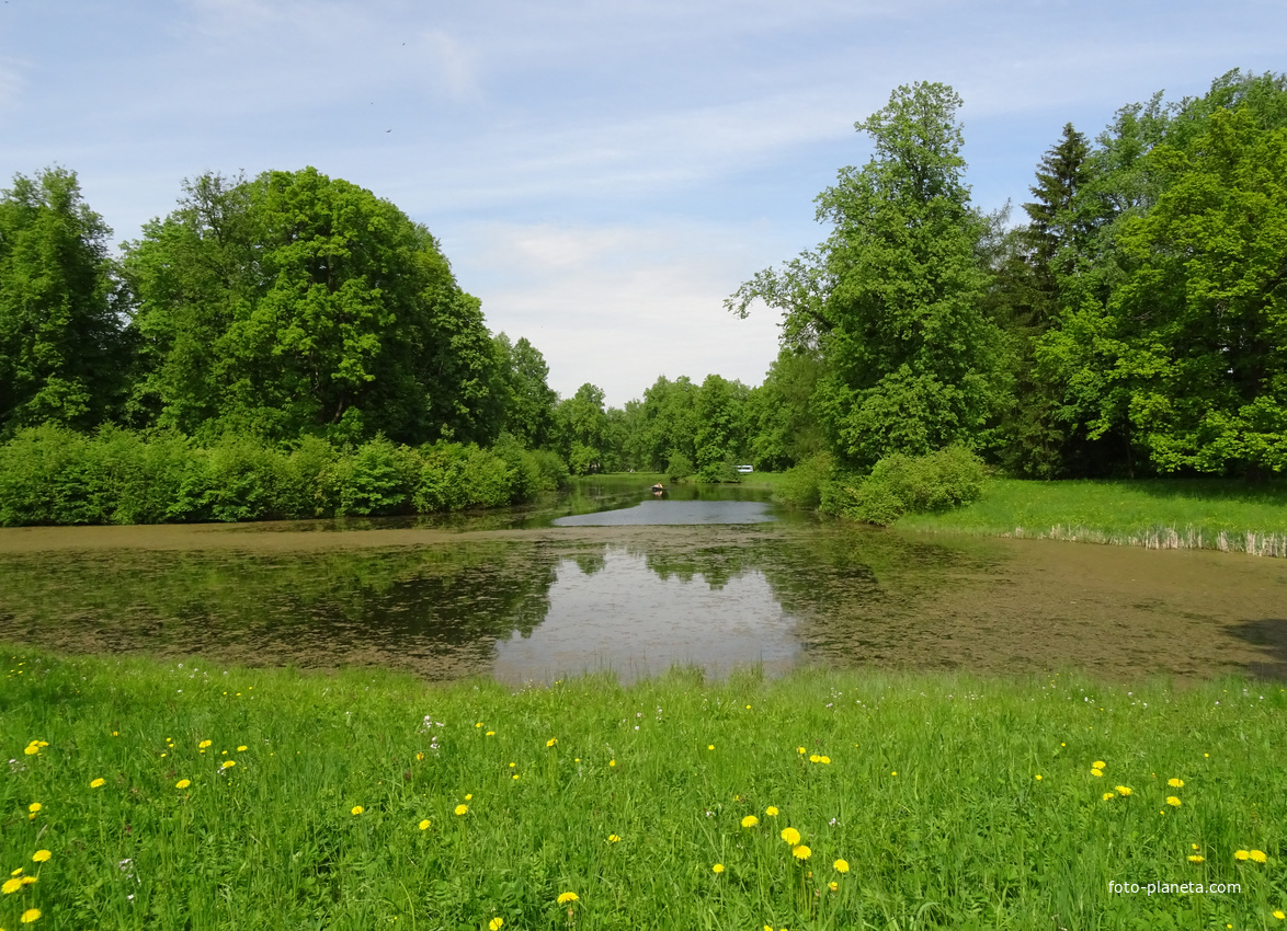 Большой Розовопавильонный пруд