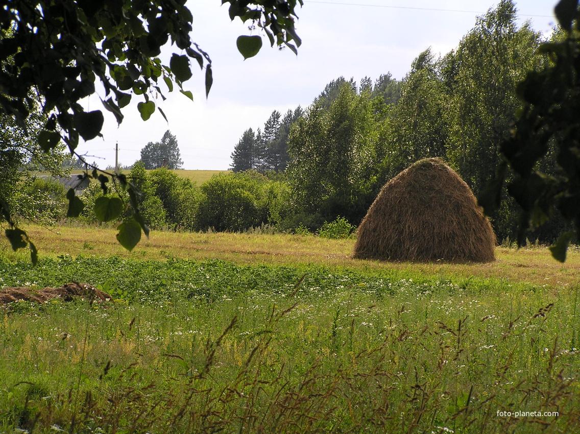 Стога | Кузнецово (Пустошкинский район)