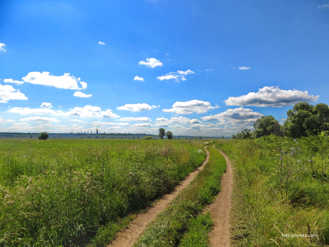 Дорога до Камы
