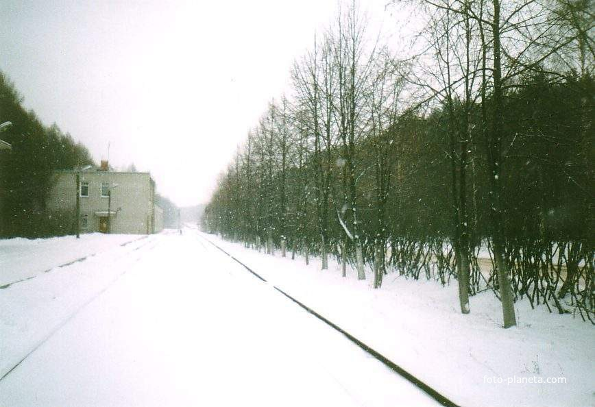 Пути на станции Пионерская. Вид в сторону станции Луговая. Слева — здание учебного корпуса, совмещённого с локомотивно-вагонным депо. 12.12.2002