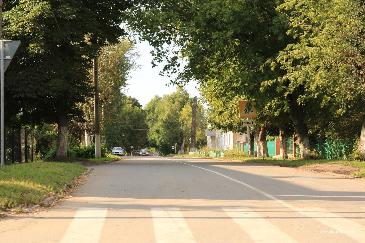 Улица Мира, школьная территория