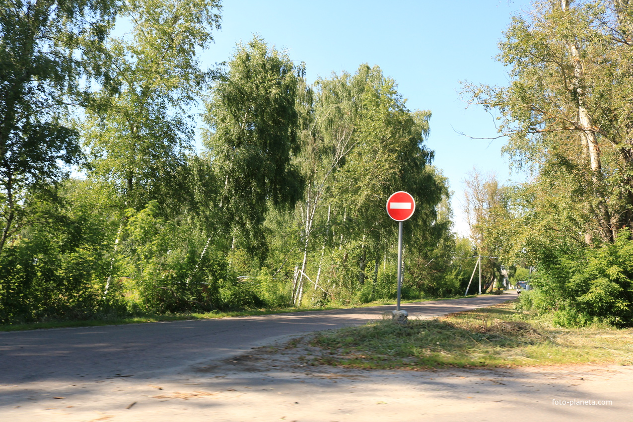 Керва, Первомайская улица | Шатурский район