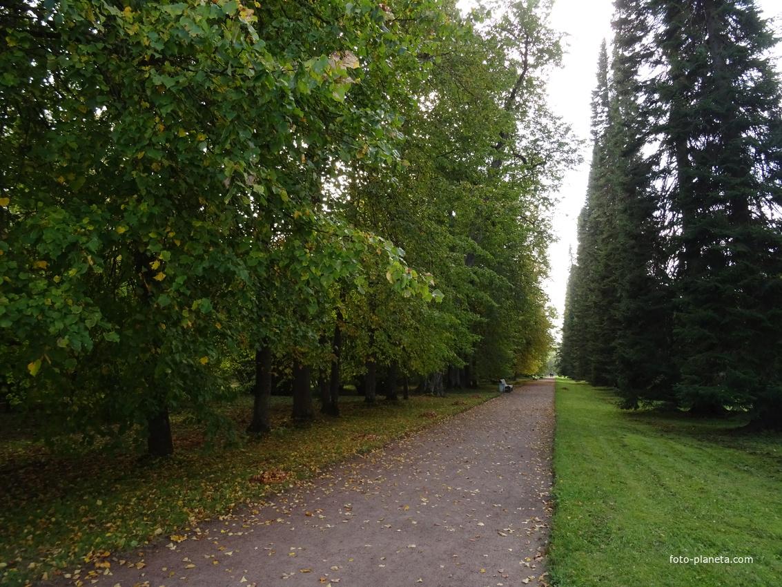 Верхний парк | Ораниенбаум (дворцово-парковый ансамбль)