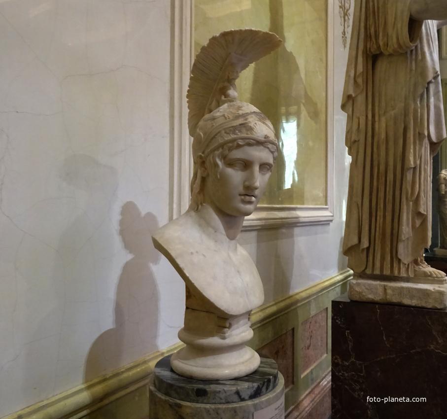 Зал Афины. Голова Ареса. | Музей Эрмитаж (Центральный район)
