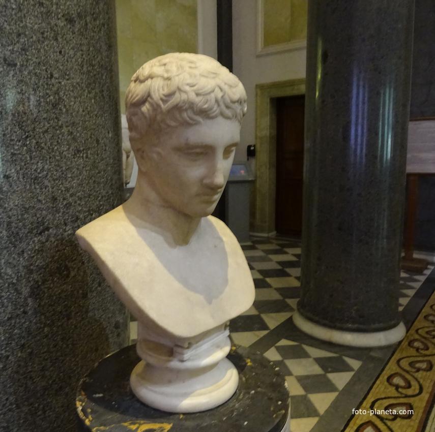 Зал Афины. Голова атлета. | Музей Эрмитаж (Центральный район)