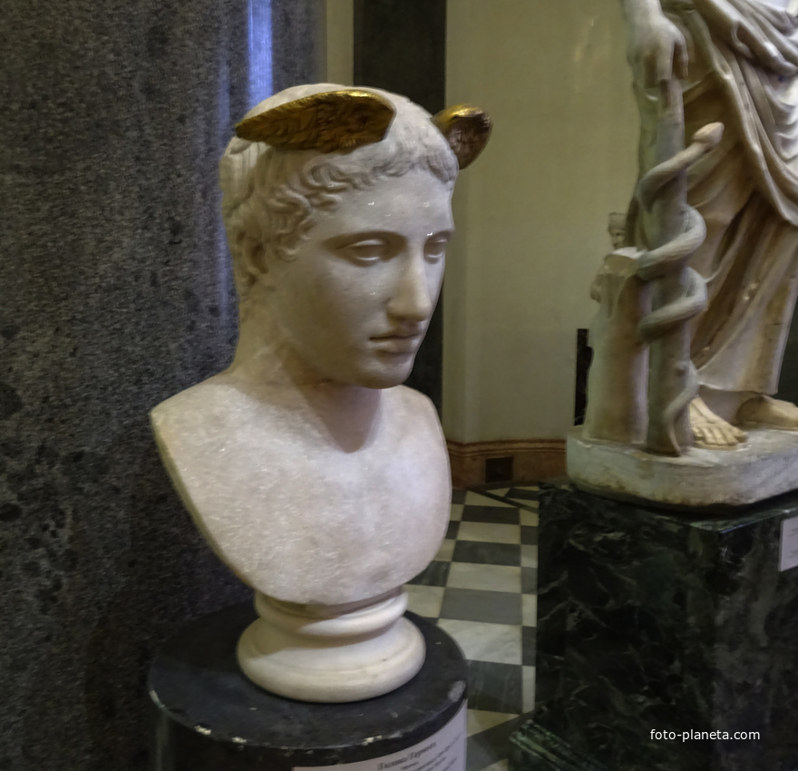 Зал Афины. Голова Гермеса. | Музей Эрмитаж (Центральный район)
