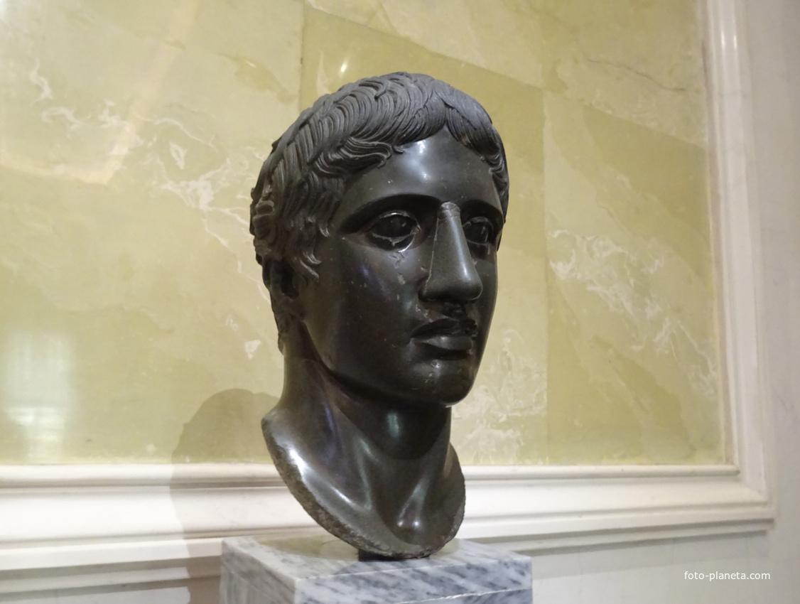 Зал Афины. Голова Дорифора. | Музей Эрмитаж (Центральный район)