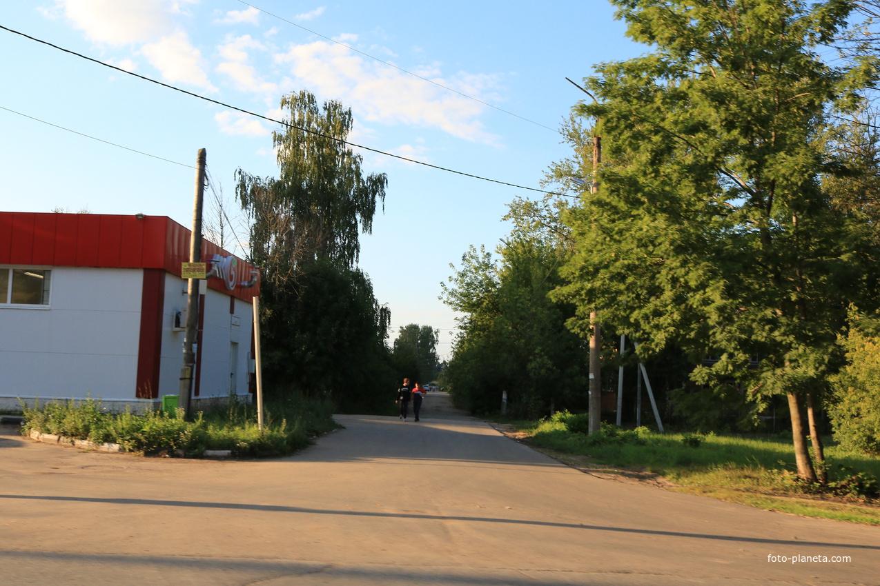 Улица Будённого