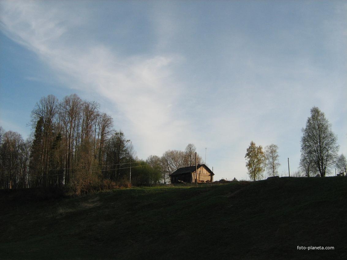 Начало весны. | Щипцово (Пошехонский район)