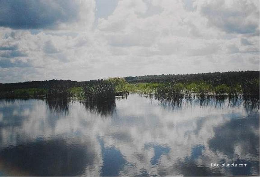 Протока от озера Имлес к Дубовому. Август 2005г.