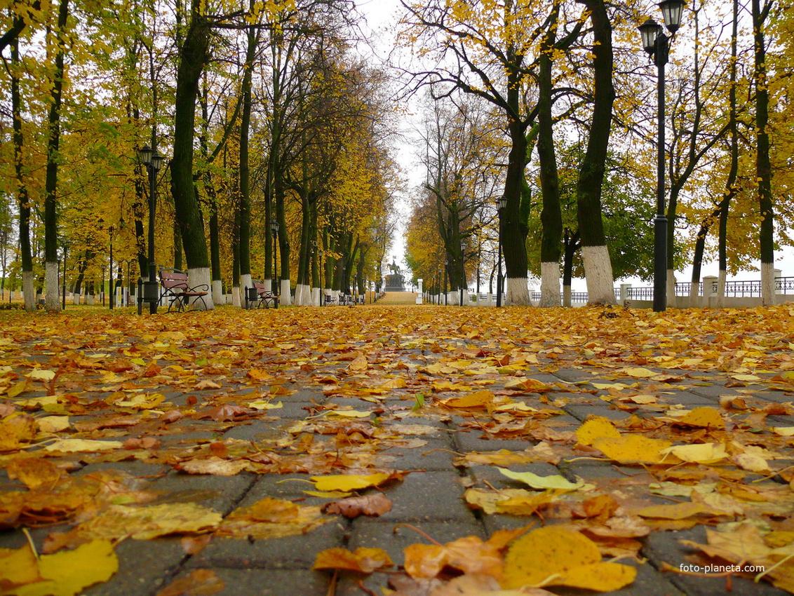 Осенний листопад. Парк Пушкина