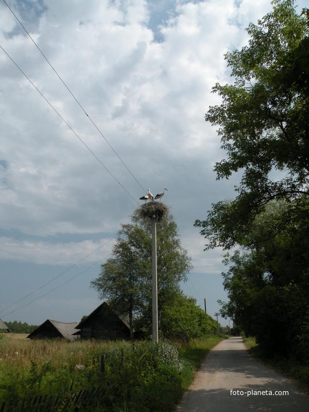 деревня Авчух