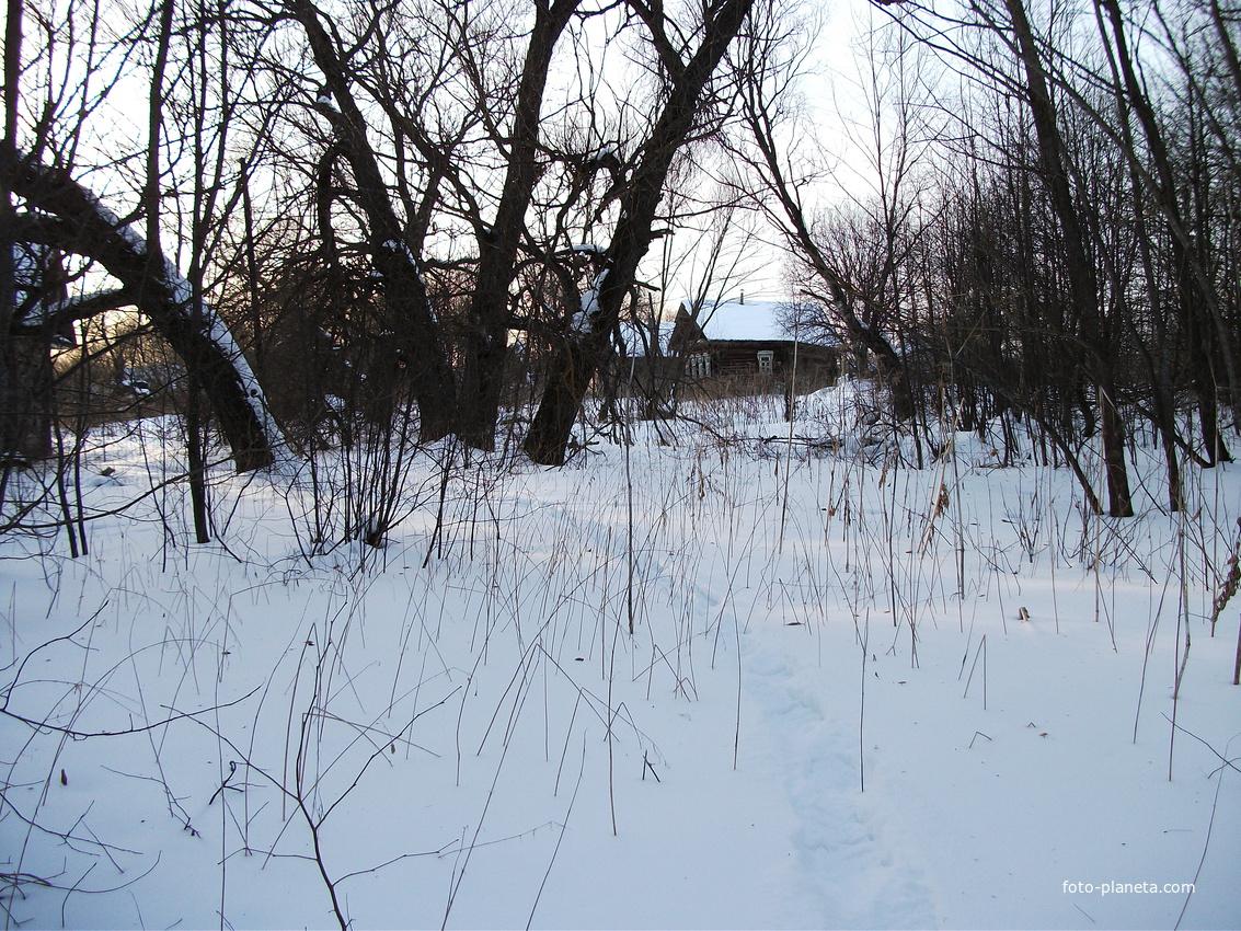 зима | Поддубное (Рамешковский район)
