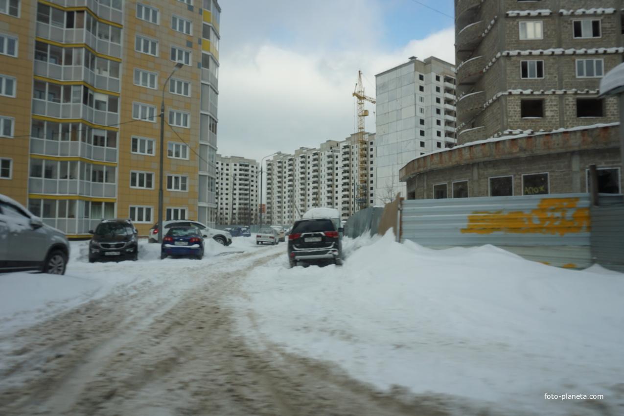 Домостроительная улица