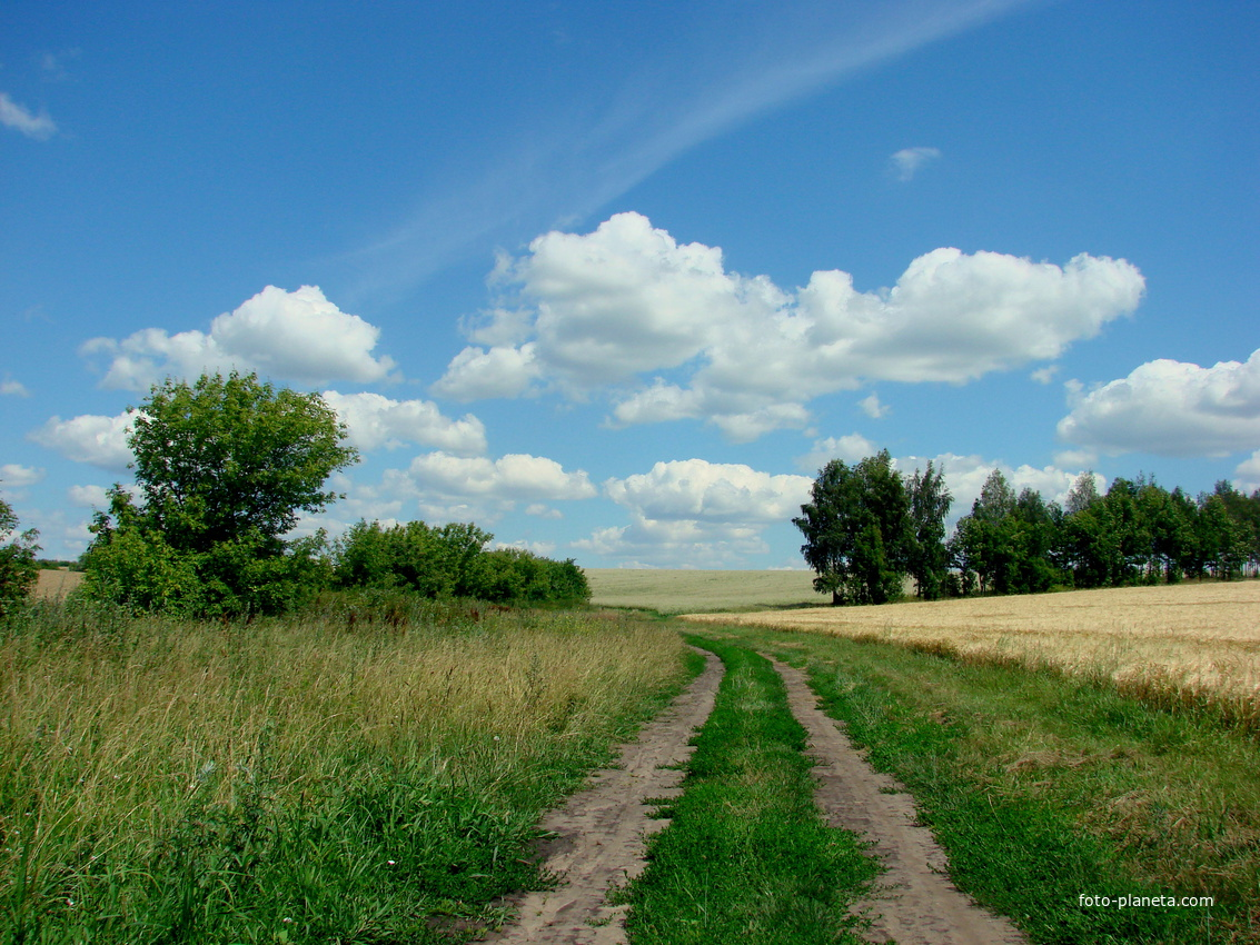 Горобівські пейзажі | Горобівка (Білопільський район)