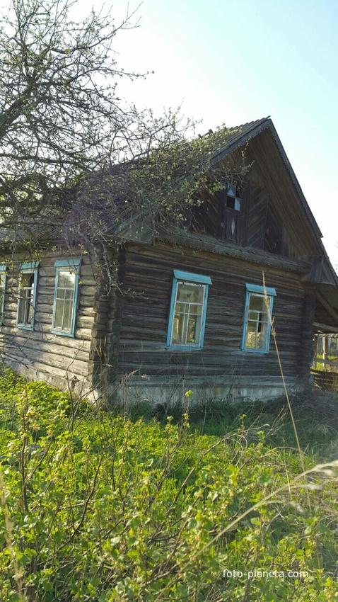 Дом Феклы Бендиковой