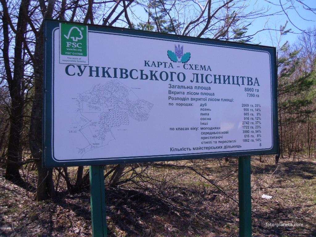 Сунківське лісництво.